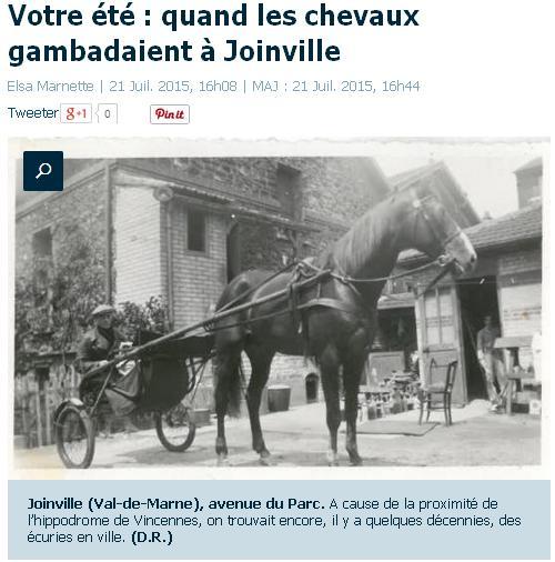 Les chevaux de Joinville