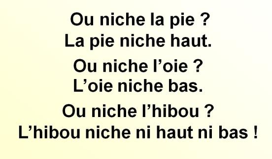 ou-niche-la-pie